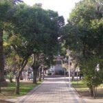 San José del Morro, la opción de febrero